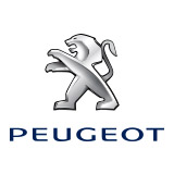 Promoted | Why PEUGEOT's 'Just Add Fuel with Telematics' is great for young drivers | Autocar